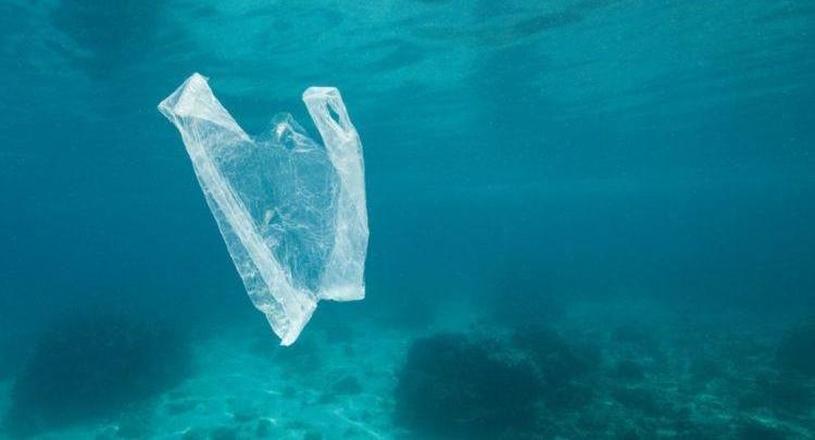 """Photo of ოკეანეების სიღრმეები პლასტმასის ნარჩენების """"ნაგვის ურნებად"""" იქცა"""