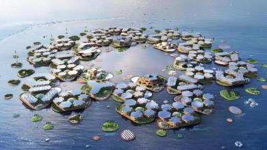 Photo of Oceanix-ის მცურავი ქალაქის პროექტი
