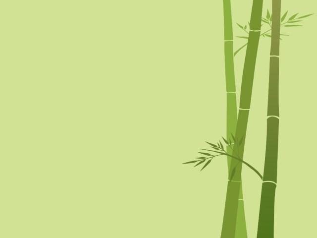 katun bambuu