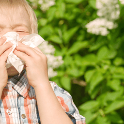 Sinuses Got You Down This Spring?
