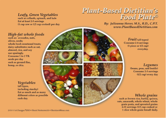 benefits of raw plant based diet
