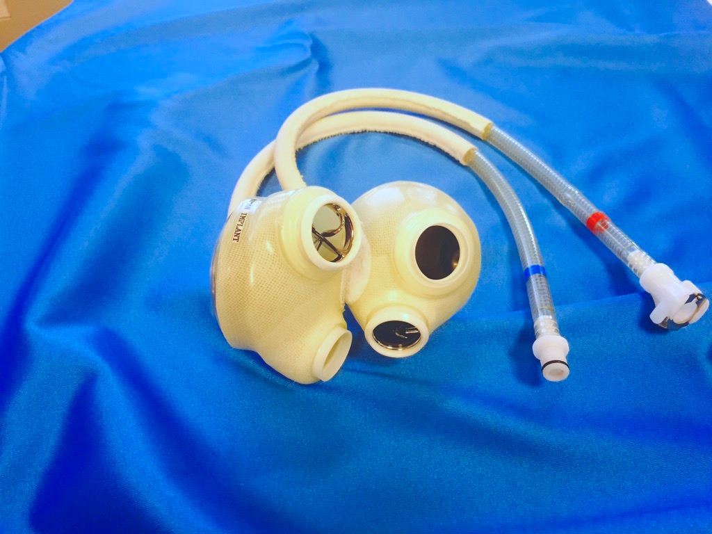 artificial heart model