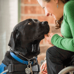 Music therapist finds companionship and aid from service dog