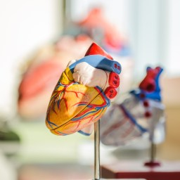 4 discoveries that are transforming heart failure care