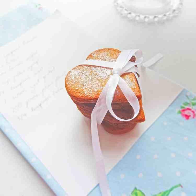 Gingernut Bisc 5.1