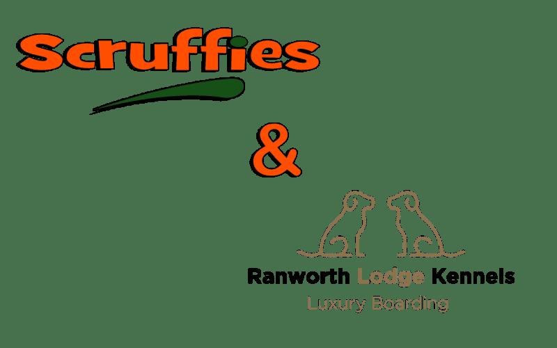 Scruffies & Ranworth Lodge Kennels Collaboration
