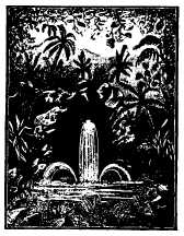 tropical glade engraving