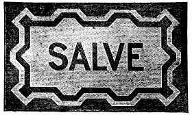 salve box