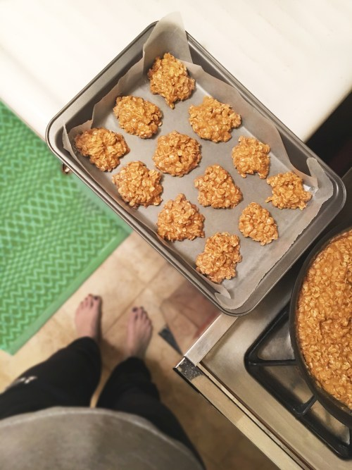No-Bake Peanut Butter & Protein Oatmeal Cookies - SCsScoop.com