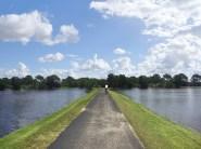 Biking around and looking for alligators!