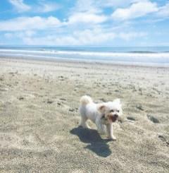 Maddie has always loved the beach.