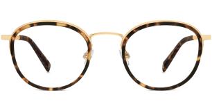 Logan Tortoise Eyeglasses