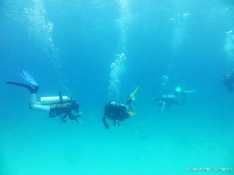 underwater03