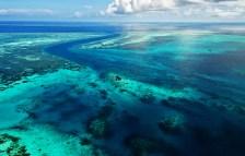 Reef-sytem-on-way-Wakatobi-Resort