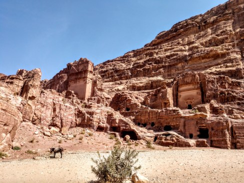 The red rocks around Petra (credit: Shelley Collett)