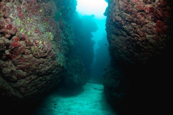 Love Tunnels dive site (photo by Lia McLain)