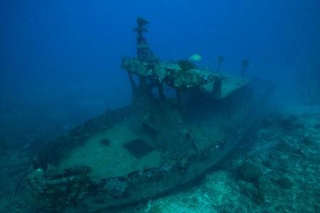 Bonzer Wreck ( photo credit: Jayne Jenkins)