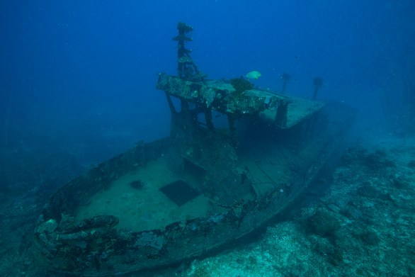 Bonzer Wreck ( photo credit: Jayne Jenkins)