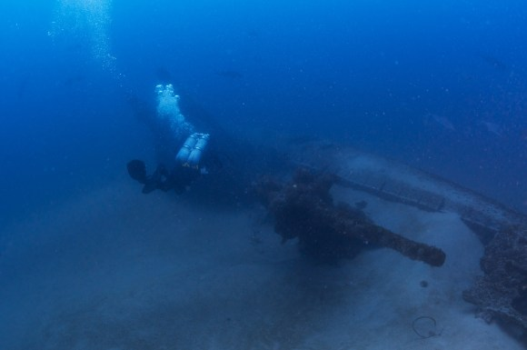 Currents partially buried U-701 in the sand, but its deck gun rises as a prominent feature. Photo: Tane Casserley, NOAA