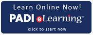 padi elearning, wellington, Instructor Development Course