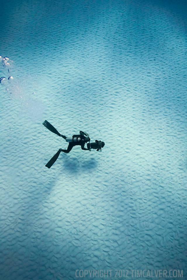 Underwater cinematographer. Bimini, Bahamas.