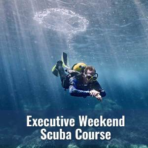 Scuba Diver - Exec Weekend Course @ DIver's World | Erie | Pennsylvania | United States