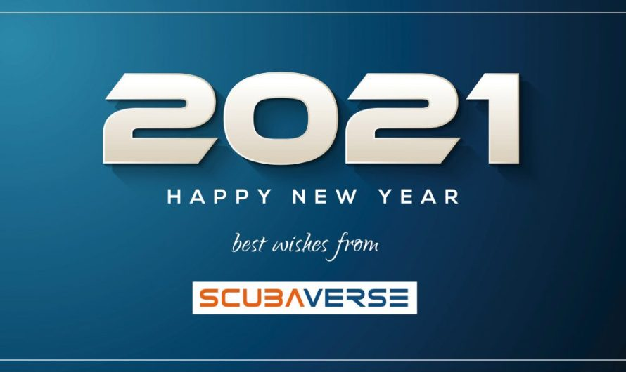 Happy New Year from Team Scubaverse!
