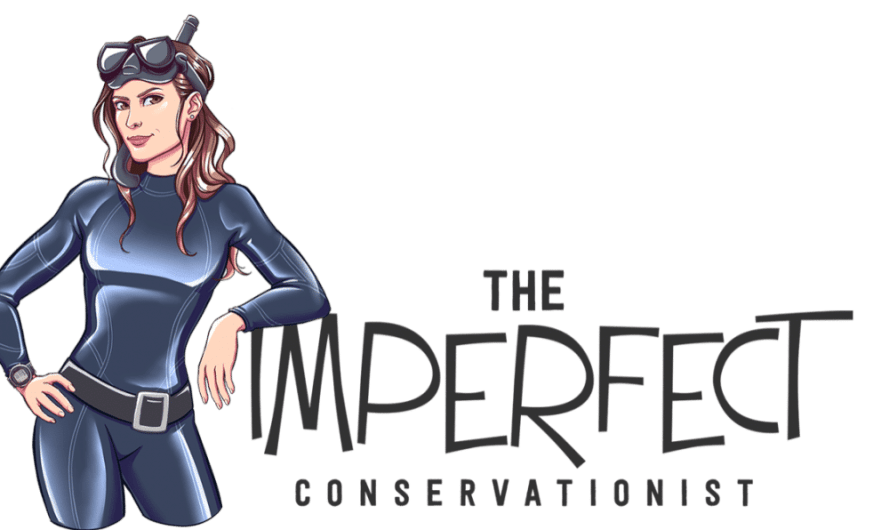 The IMPERFECT Conservationist, Episode #1: Kick the Plastic Bag Habit – for Good! Even if you always forget your reusables (Watch Video)