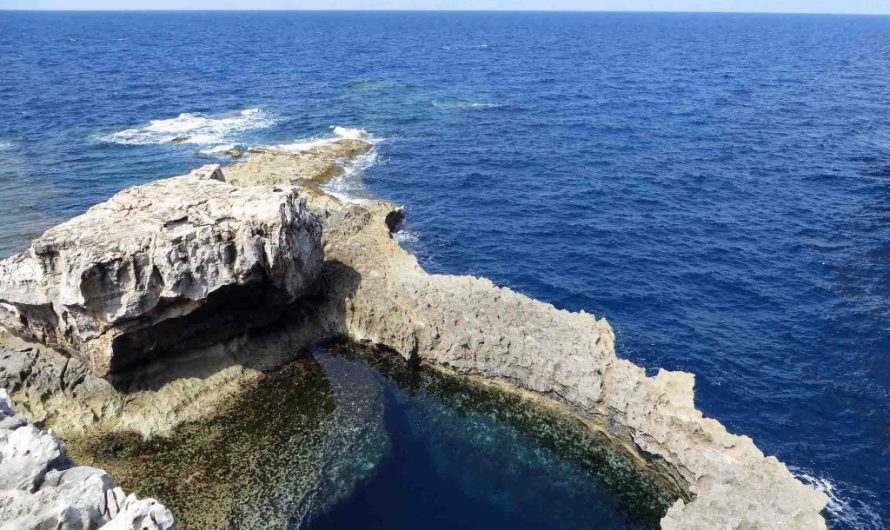 100-euro giveaways for Malta divers