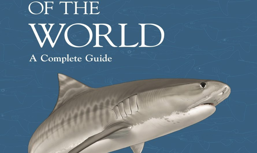 Book Review – Sharks of the World: A Complete Guide