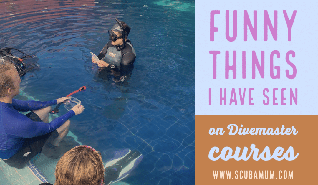 funny things on divemaster programs