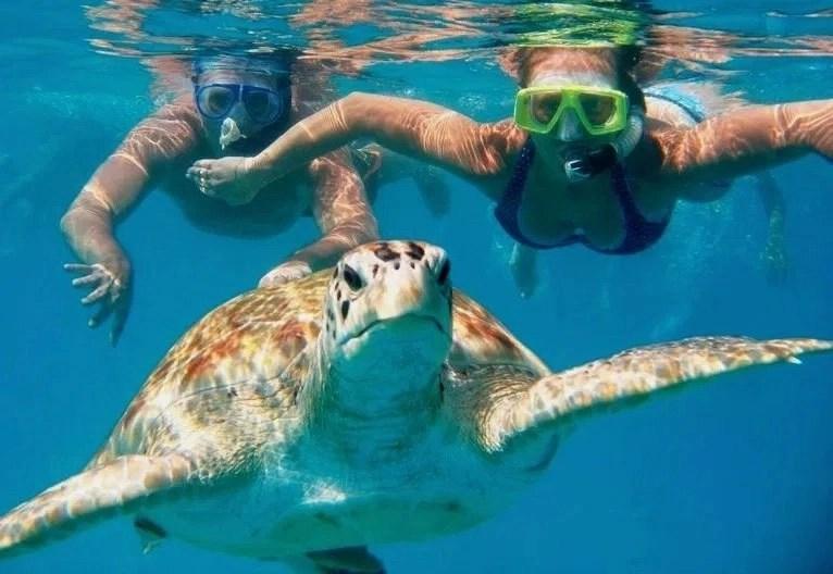 Waikiki SCUBA Diving Cost