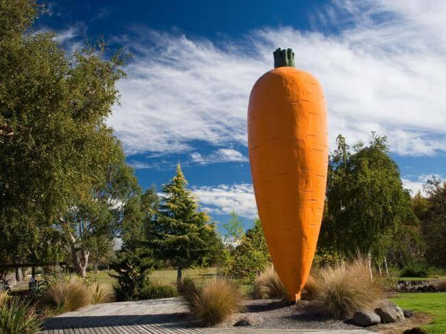 Big Carrot