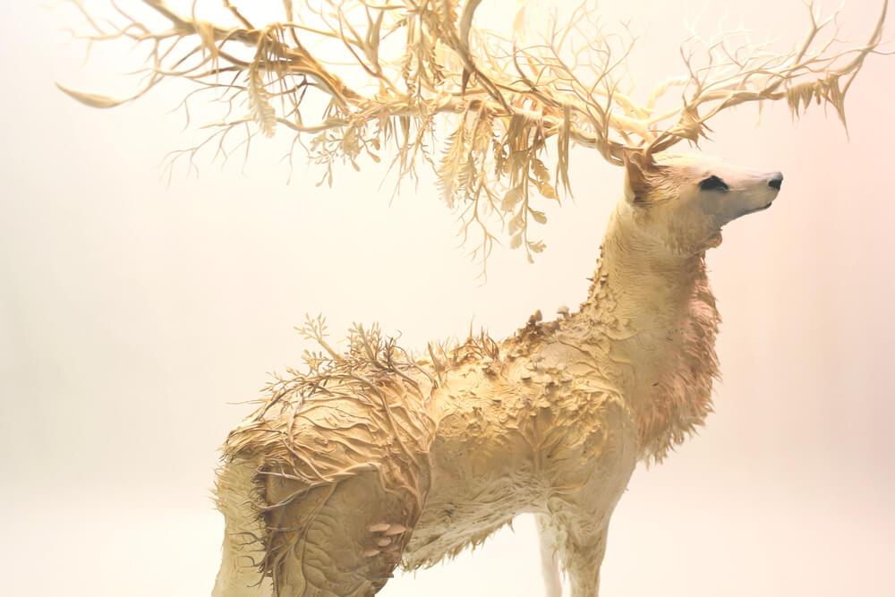 Ellen Jewett deer