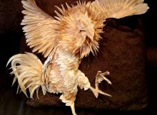 rooster paper sculpture by Quan Huynh