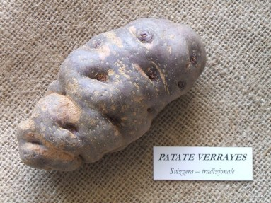 Patata Verrayes