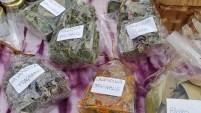 Castro - Agricoltura Sostenibile Alpina Semi di Resistenza - Tellin Camuno 6