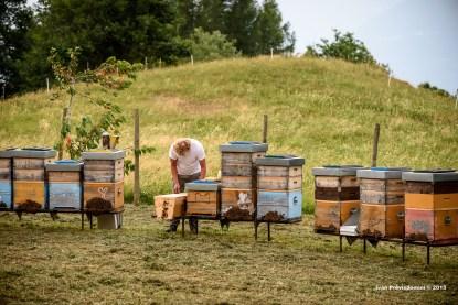 visita all'apiario dei Bislack - fotografia di Ivan Previsdomini