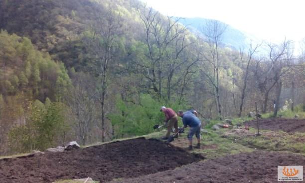 Orti_ValCodera_Scuola_Ambulante_Agricoltura6