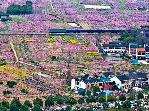 paesaggio-agricoltura-architettura-e-urbanita-alla-triennale-di-milano-480x360