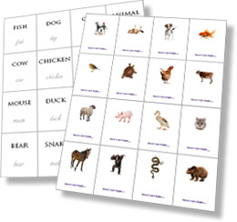 Flash cards in inglese