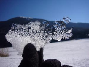 Giochiamo agli scienziati sulla neve