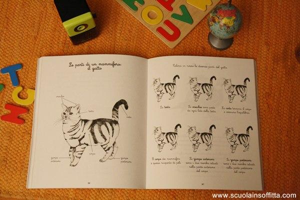 libro le mie attività Montessori di L'Ippocampo