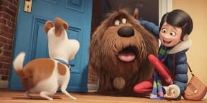 Film per bambini: Pets, Vita da animali