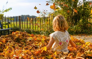 Libri per bambini sulle stagioni