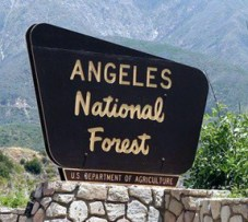 angelesnationalforestsign