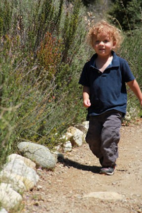 The writer's son, Sky, hikes in Placerita Canyon.