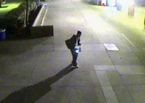 burglars041013c