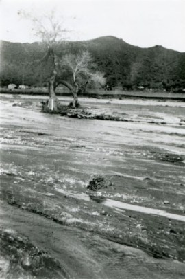 The Santa Clara River overflows in the Great Flood of March 2, 1938, which hit greater Los Angeles. Afterwrard the L.A. River was turned into a concrete flood-control channel ... but the Santa Clara wasn't. It might look dry most of the year, but when it rains, it's prone to flash flooding. Take heed.