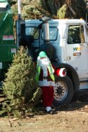 christmas_tree_recyling